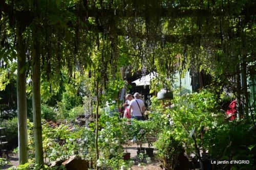 Fouleix,cygnes,Inès,jardin 085.JPG
