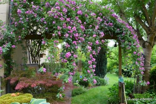 Arya,roses,cygnes,coulobre,nigelles,abeille,cabane 021.JPG