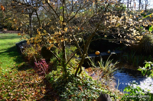 Romefort,bord de Creuse,vent,feuilles,jardin,canal 089.JPG