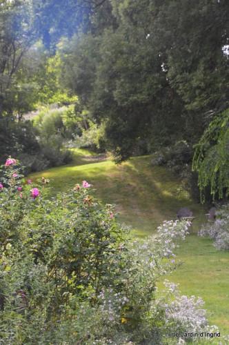 asters,bouquets,jardin de Lilianne 100.JPG