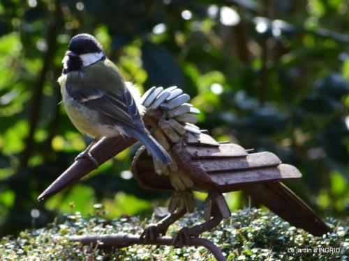 les écorces,troncs,oiseaux ,héllébores 062.JPG