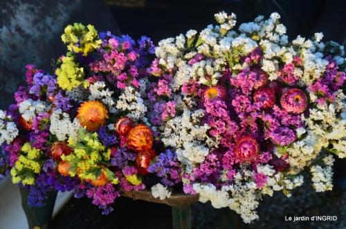 Issigeac,citrouilles ,rhus,automne,jardin 103.JPG