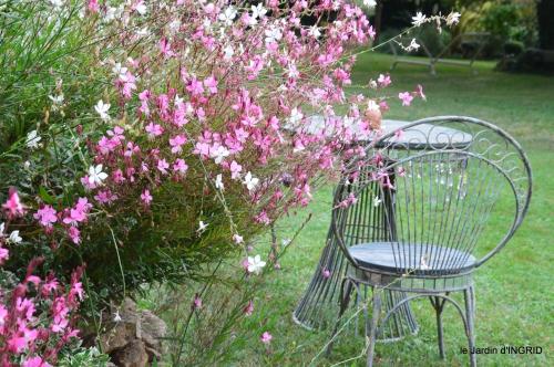 jardin en septembre,les cygnes 143.JPG