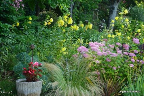 hémérocalles,Doprdogne,canal,bouquet fruit,jardin 119.JPG