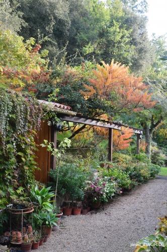 Jardin à l'automne 040.JPG