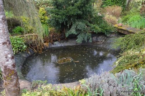 semis,bassin,tour du jardin 107.JPG