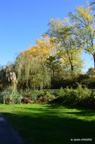 jardin automne,voisinage,canal 156.JPG