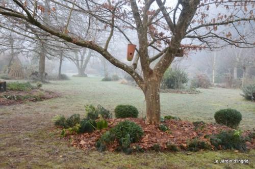 jardin givré,oiseaux 047.JPG