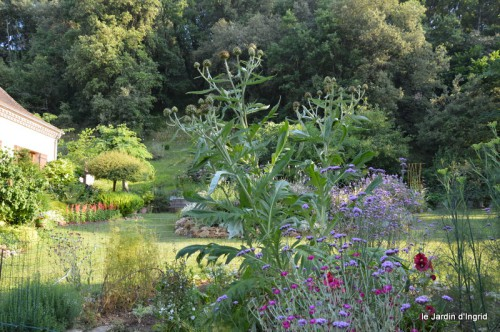 jardin matin,Romane ,nicky 003.JPG
