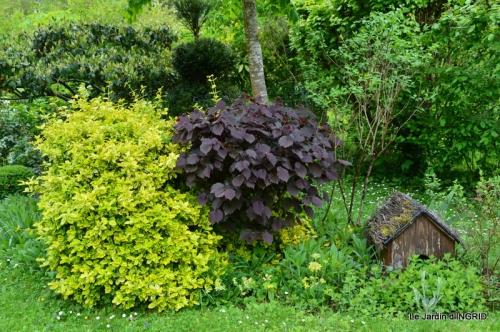 jardin avril 114.JPG