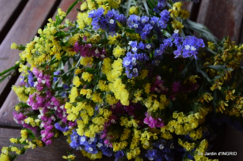 tournesols,pt jardin,nénuphard,libellules,lavande bouquet,carava 125.JPG