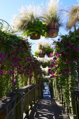 Lalinde passerelle,bouquet,jardin septembre 005-001.JPG