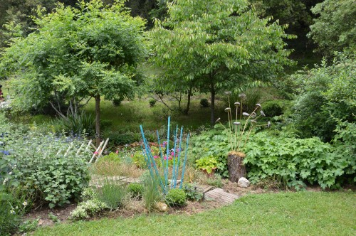 tour du jardin en juin 041.JPG