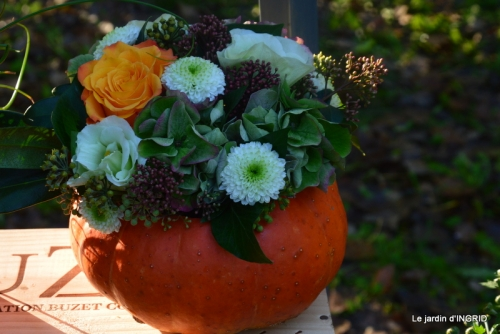 Issigeac,citrouilles ,rhus,automne,jardin 033.JPG