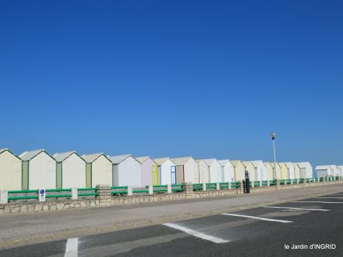 la baie de Somme 038.JPG