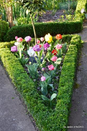 Bergerac, jardin ,arbres fruitiers,printemps 072.JPG