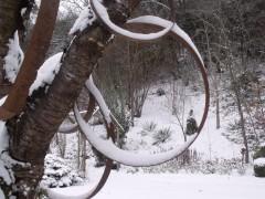 janvier fevrier 2012 050.JPG