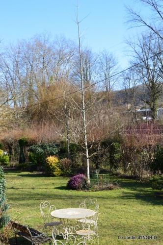 tulipes,crocus ,jardin 044.JPG