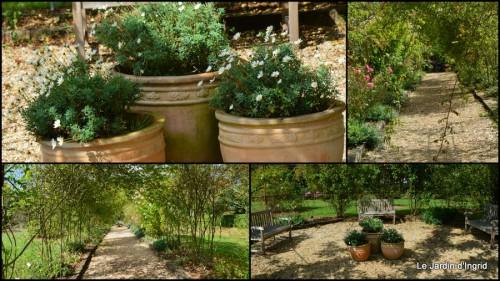 2014-09-24 jardin de Marie,éoliennes,Ciron,Angles,Fontgombault8.jpg