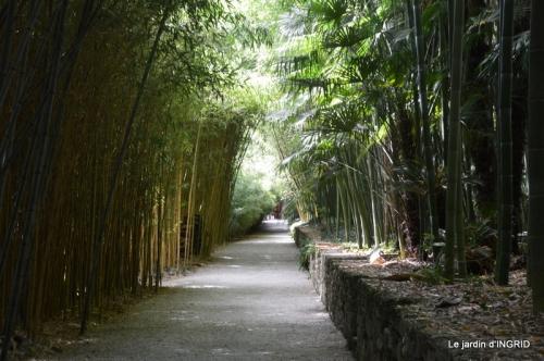 bambous Roque Gageac,jardin,bouquet 179.jpg