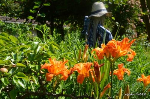 hémérocalles,les filles,les cygnes,la passerelle,moi,jardin 195.JPG