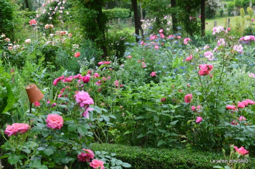 Trémolat,petit jardin,Julie 081.JPG