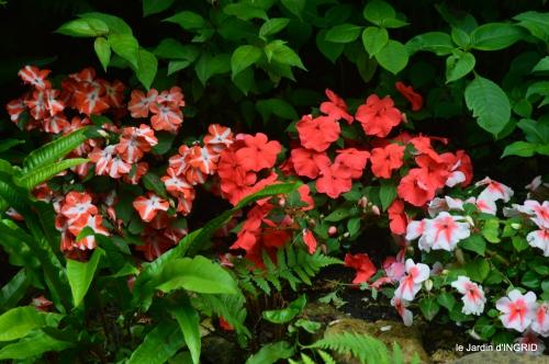 jardin,portes ouvertes,Julie 003.JPG