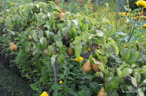 jardin,fruits,Caro,papillons,manthe religieuse,Lalinde 057-001.JPG