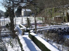 janvier fevrier 2012 092.JPG