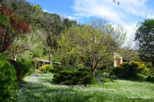 jardin printemps 066.JPG