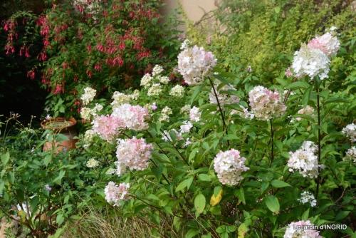 bouquet d ete,Plambouissin,grotte ,Erignac,Campagne,Julie 107.JPG