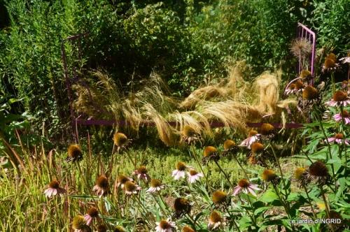 orage,puces,bouquet,Anniv.Ines,Brantome,Jardins d'eau 062.JPG
