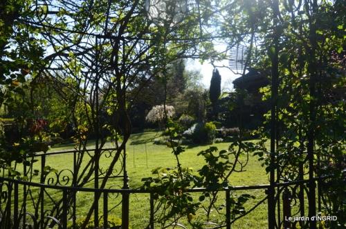 jardin confiné ,osier,magnolia jaune 149.JPG