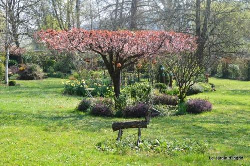 tonte,jardin,fleurettes 021.JPG