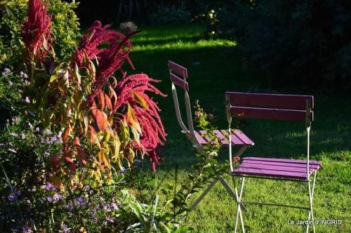 jardin Mme Perichou,grandes fleurs,bouquet,jardin 115.JPG