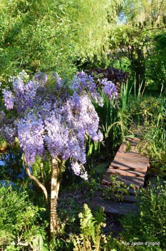 Ciron,pivoine,escargot,jardin,ancolie,glycine 212.JPG