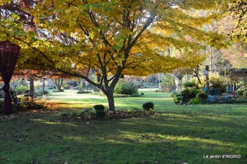 canal,automne,tonte des feuilles 090.JPG