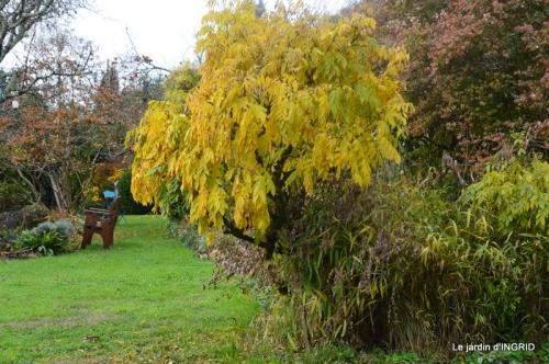 troc,automne,serre 016.JPG