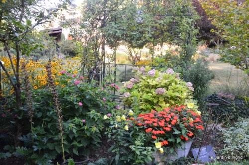 mon coin,Monique,les oies,mon jardin 015.JPG