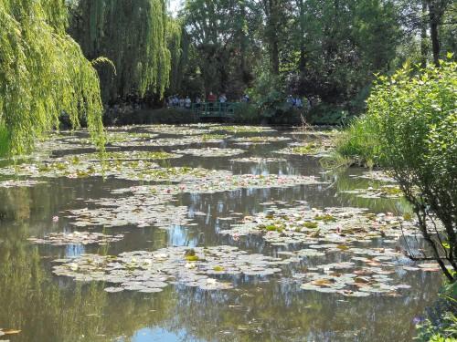 Normandie,jardin Monet,baie de Somme,chez Marylaur 197.JPG