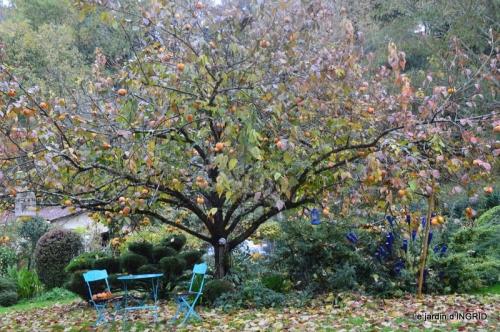 jardin automne 006.JPG