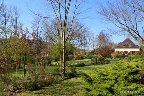 tour du jardin printemps 005.JPG