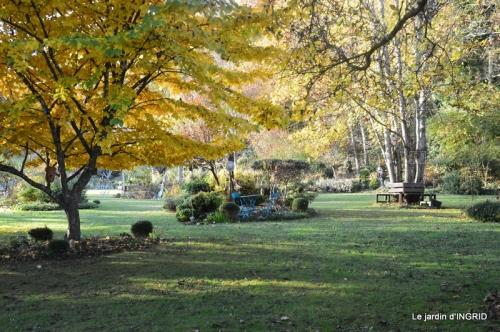 canal,automne,tonte des feuilles 091.JPG