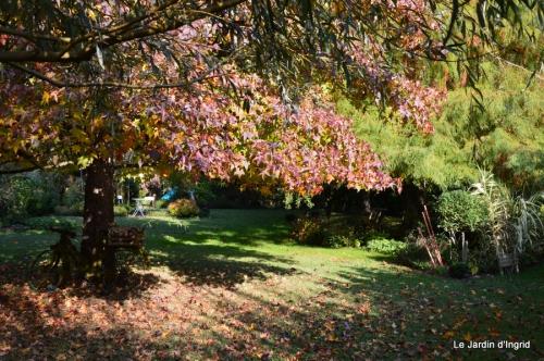 jardin automne,Arya avec Nicky 108.JPG