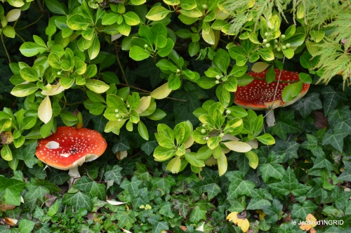 brocante st avit Se.jardin st Avt,récolte tomates 133.JPG