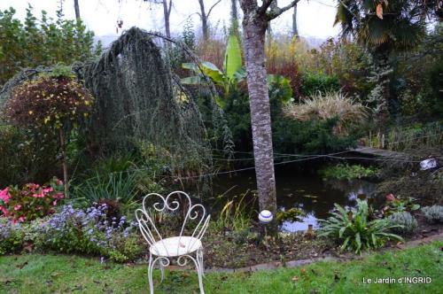 kakis,dernières fleurs,pt jardin,Julie,bassin 092.JPG