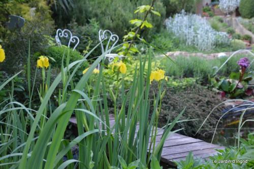 jardin,premières roses,colline,avant l'orage 031.JPG