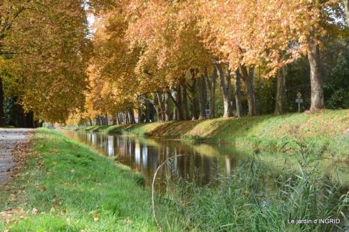 canal automne ,jardin,Ines 085.JPG