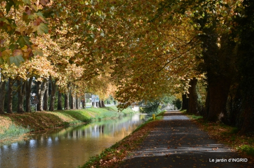 canal automne ,jardin,Ines 090.JPG