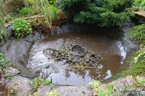 semis,bassin,tour du jardin 080.JPG